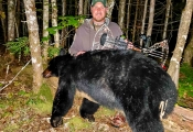Bear2020-07